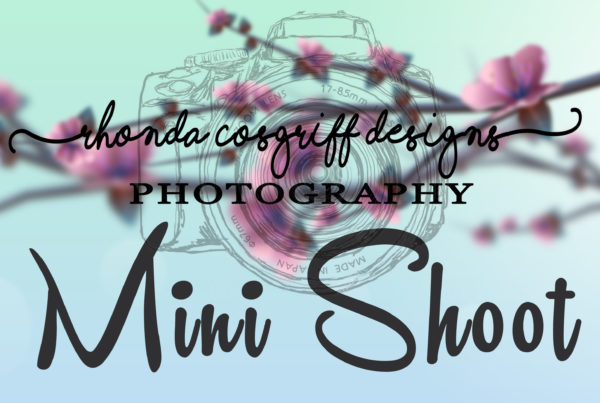 Photography Company, Rhonda Cosgriff Designs