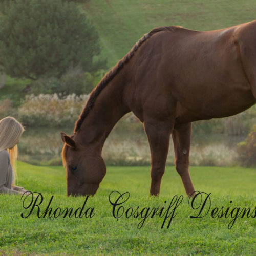 Equine photograph by Rhonda Cosgriff Designs